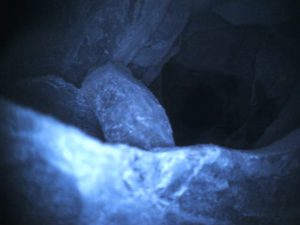 Снимок скважины